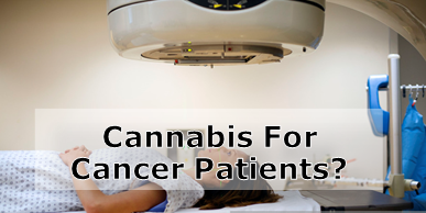 Cancer Patients Can Benefit from Cannabis Oil Treatments