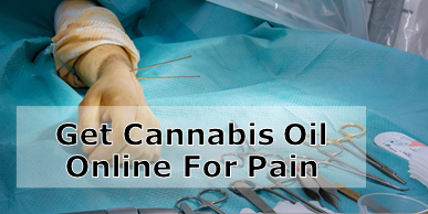 Buy Cannabis Balm Online for Arthritis