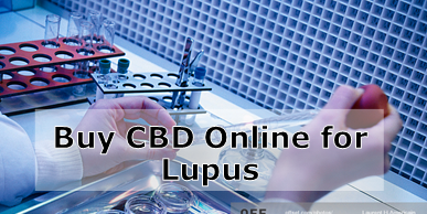 Buy Cannabis Oil Online and Treat Lupus Symptoms